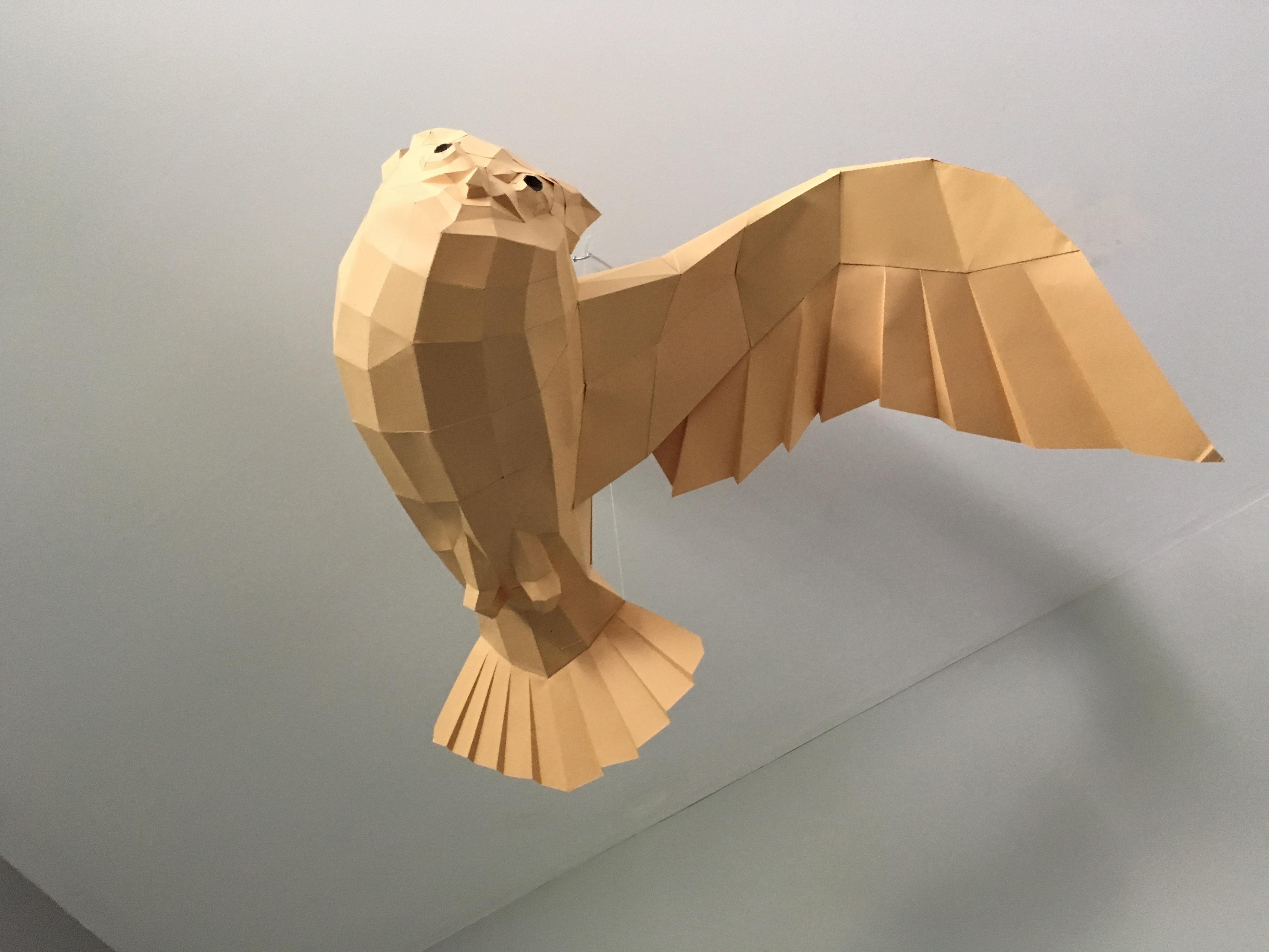 3d papercraft owl hobbybuilders img7623 jeuxipadfo Image collections